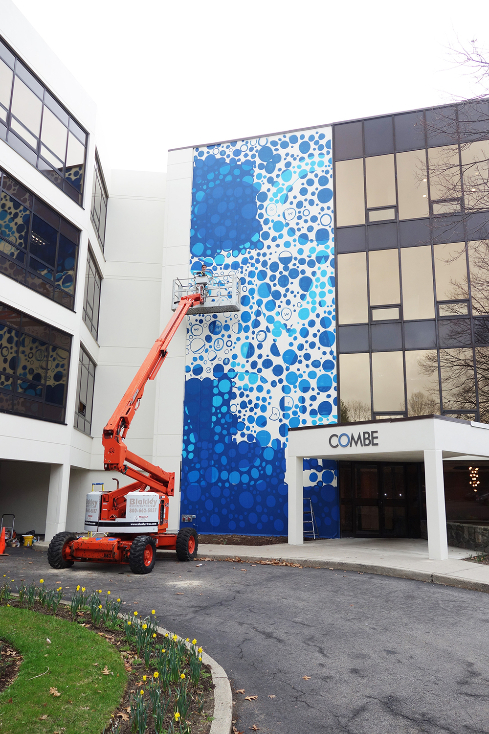 Exterior mural artist for hire combe ny graffiti usa for Exterior mural painting