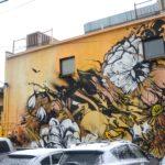 Denver Graffiti Art by Jolt